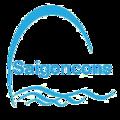 saigoncons (@saigonconshoboi) Avatar