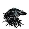 Odin Sanctum Group LLC (@odinsanctumgroup) Avatar