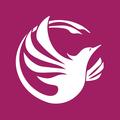 Phoenix Virtual Assistant (@phoenixvirtualsolutions) Avatar