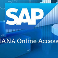 Sap Remote Access Hyderabad (@sapabapserveraccess) Avatar