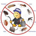 Pest Control Bridgeman Downs (@henryspestcontrolbridgemandowns) Avatar