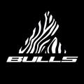 Bulls Bikes USA (@bullsbikesusa) Avatar