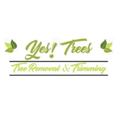 Yes! Trees Tree Service (@yestreesllc) Avatar