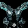 (@drxviii) Avatar