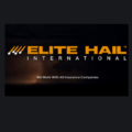 Elite Hail International (@elitehailinternational) Avatar