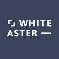 whiteaster (@whiteaster) Avatar
