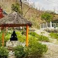 Adhiroha- Yoga School in Rishikesh (@yoga-teacher-training-in-rishikesh) Avatar