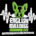 english bull dogg (@englishbulldogg) Avatar