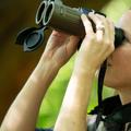 Binoculars (@binoculars1) Avatar