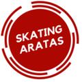 Skating Aratas (@skatingaratas) Avatar
