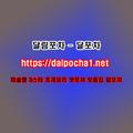 달포차 Dalpocha1、Net 음성오피 (@zyiesyisyeno6) Avatar