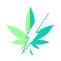 EZ Weed Onl (@ezweedonline) Avatar