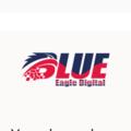 Blue Eagle Digital (@blueeagledigital) Avatar