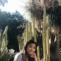 kelly (@constellate) Avatar