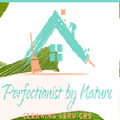 Perfectionist By Nature (@perfectionistbynature) Avatar