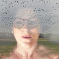 Sherrie von Sternberg (@inthespringof63) Avatar