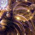 World Astr (@worldastro) Avatar