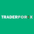 TraderForex (@traderforex) Avatar