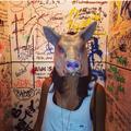 Juju Leite (@jujufleite) Avatar