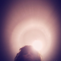 Golsa (@golsa) Avatar