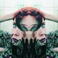 Sylé (@faelucid) Avatar