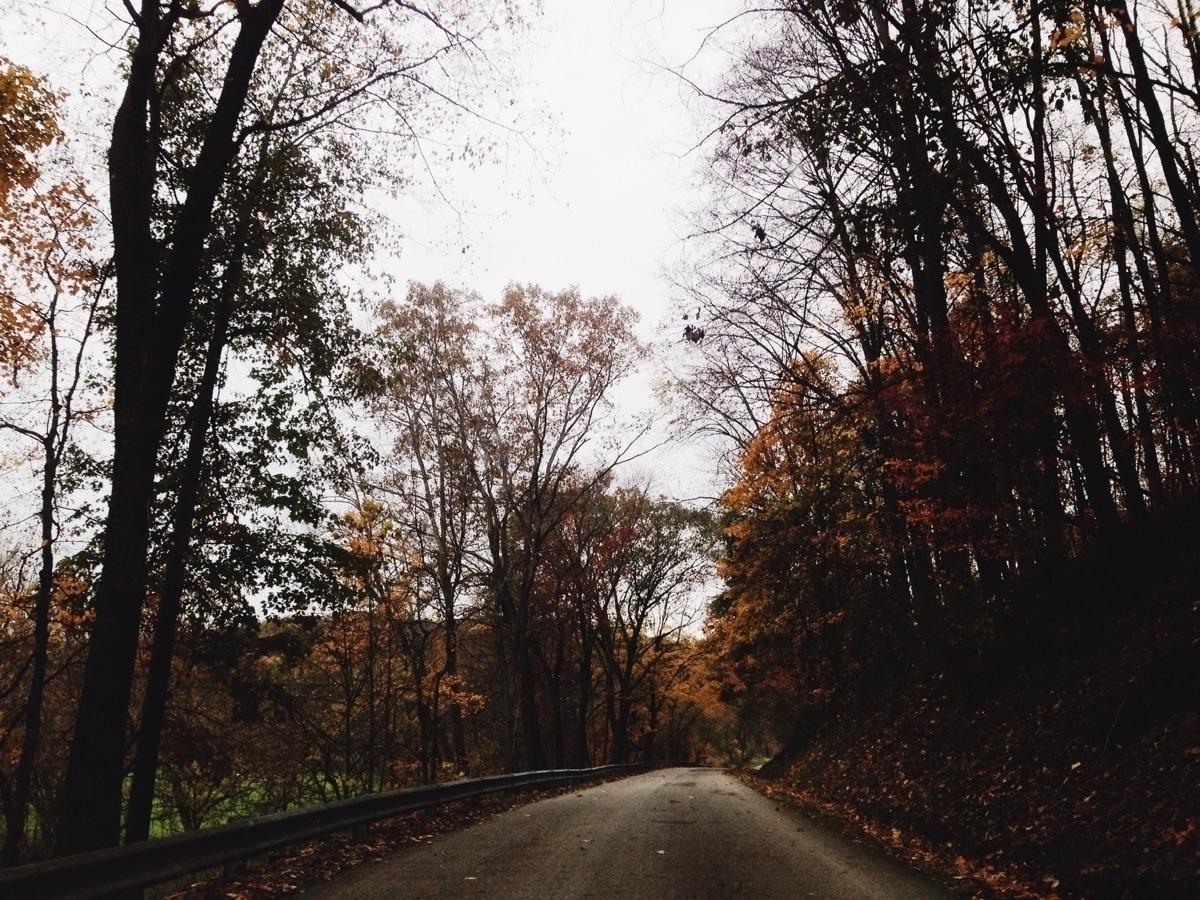 Mikailah Autumn (@mikailahautumn) Cover Image