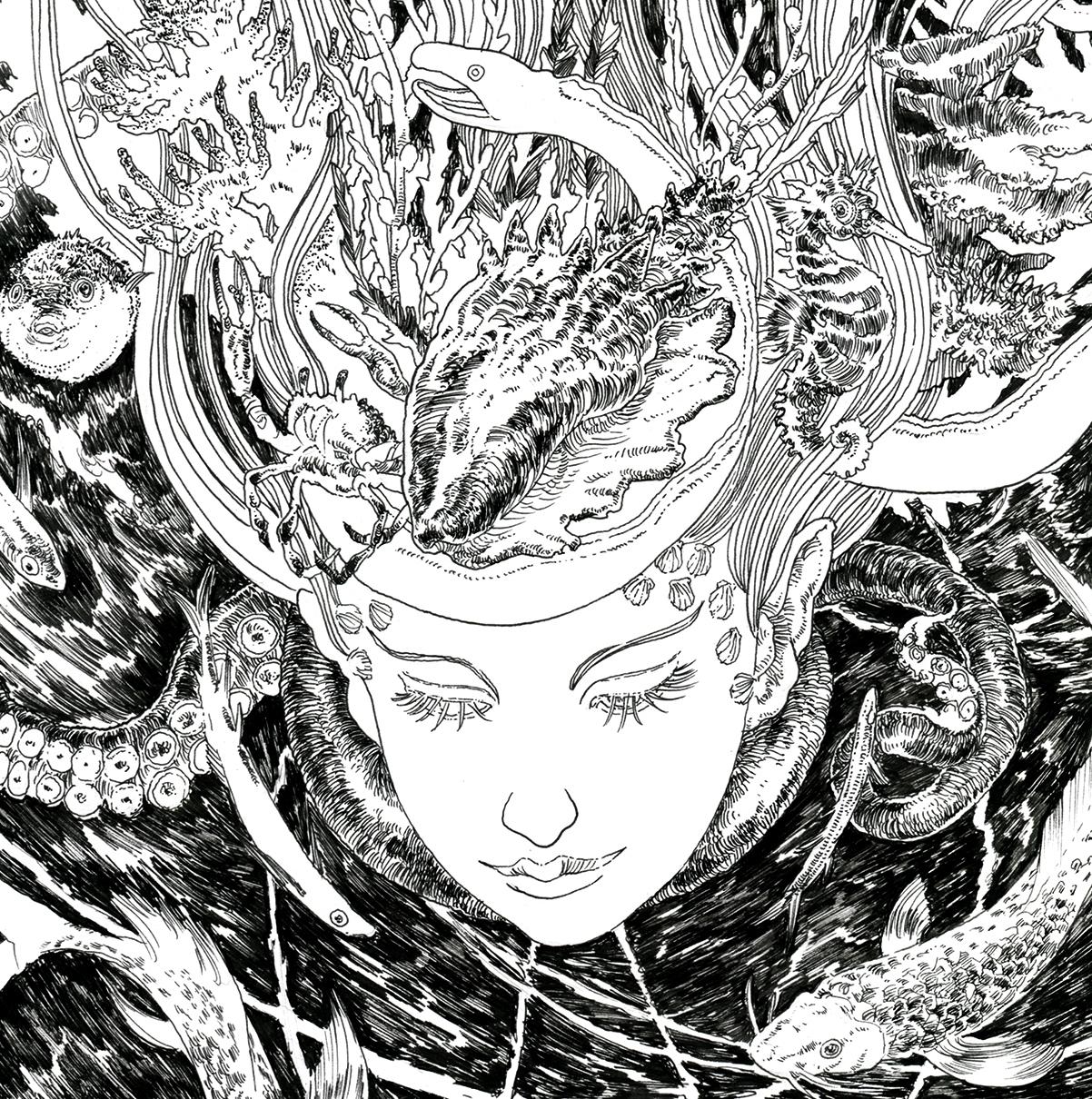 Elliot Lang (@ellistrator) Cover Image