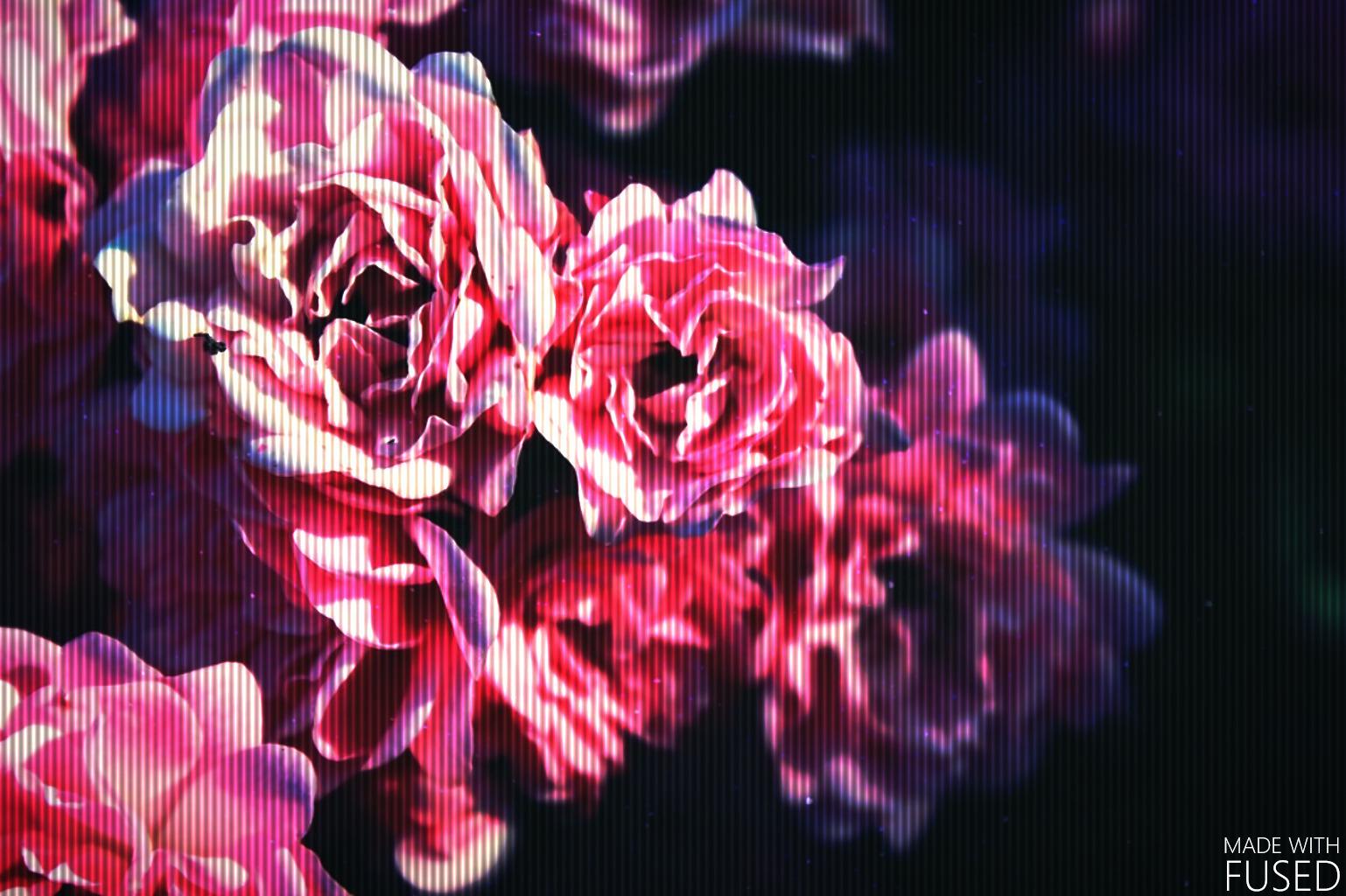 Lupe (@princess_g) Cover Image