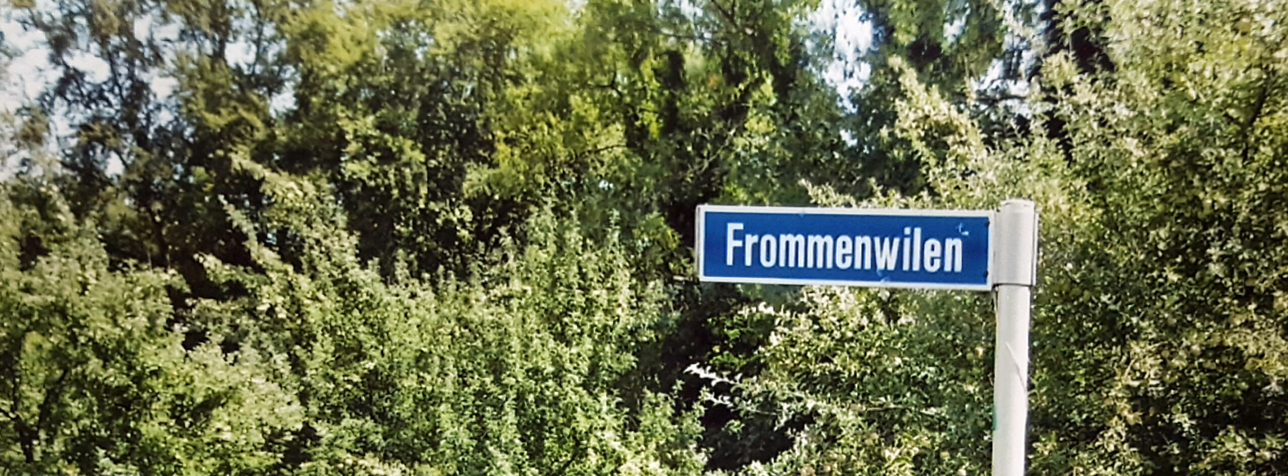 Willi Frommenwiler (@frommenwiler) Cover Image