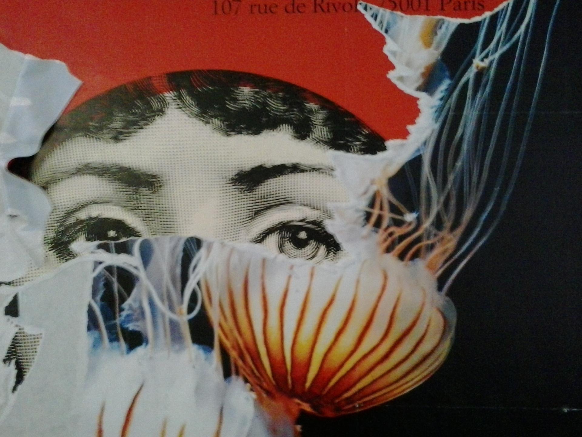 alexandra (@alex-san) Cover Image
