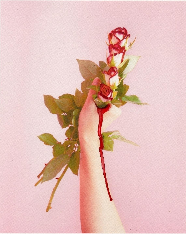 Sandra Victoria (@sandravictoria) Cover Image