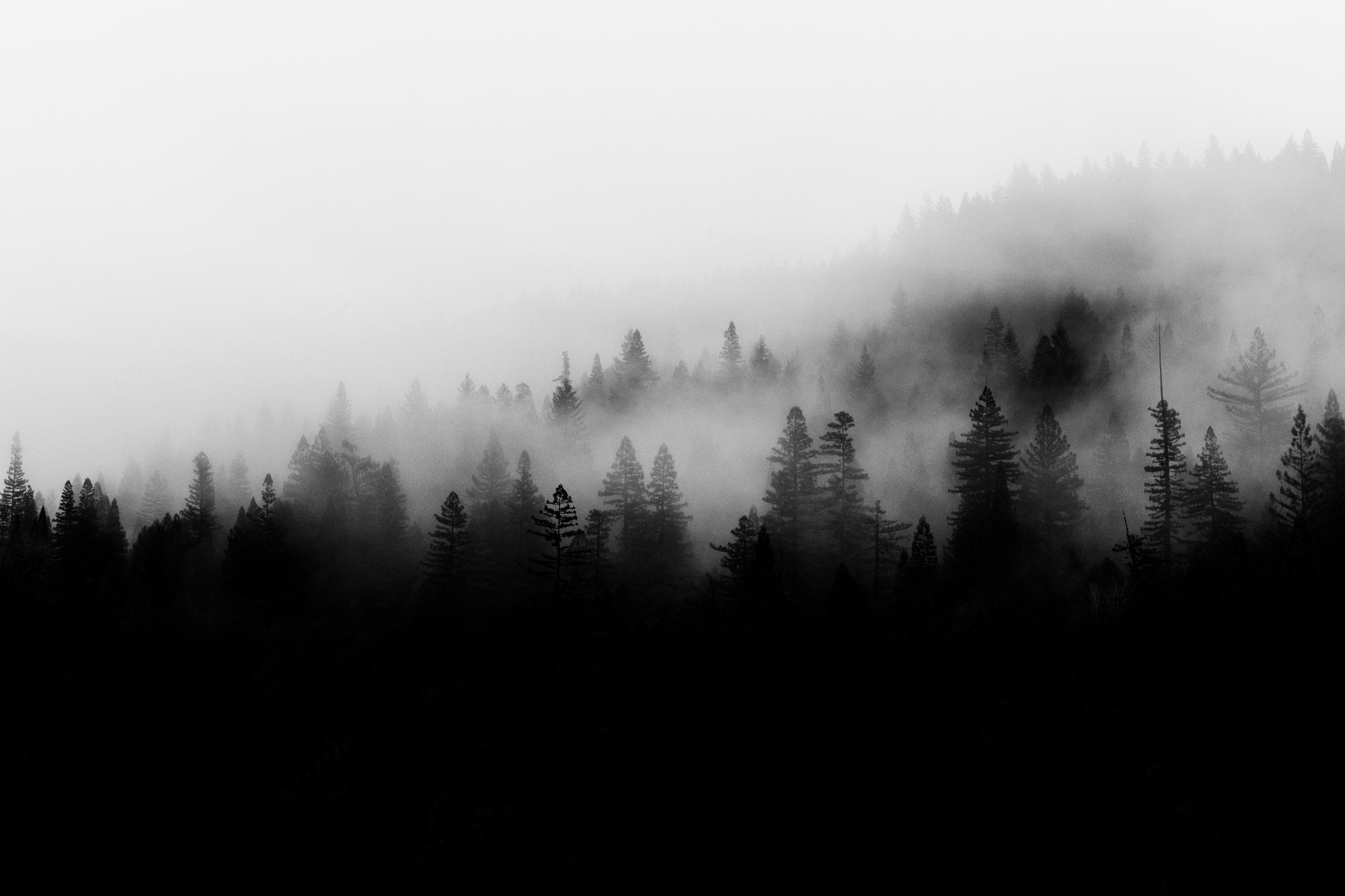 k.j.owen (@kjophoto) Cover Image