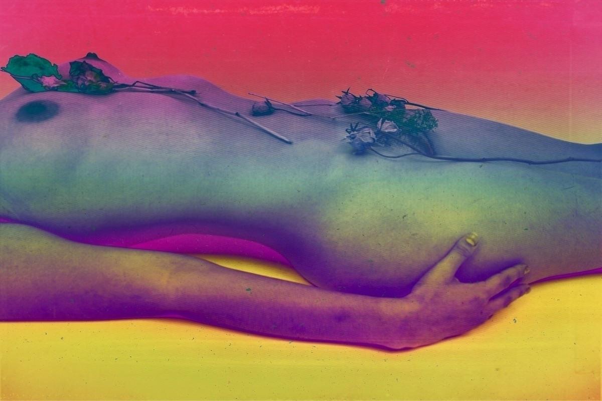 Nacho (@nachodung) Cover Image