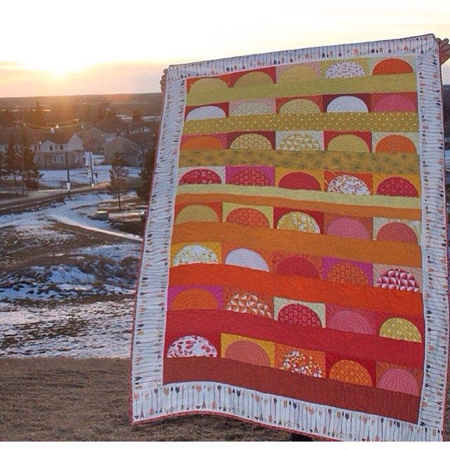 Anita (@daydreamsofquilts) Cover Image