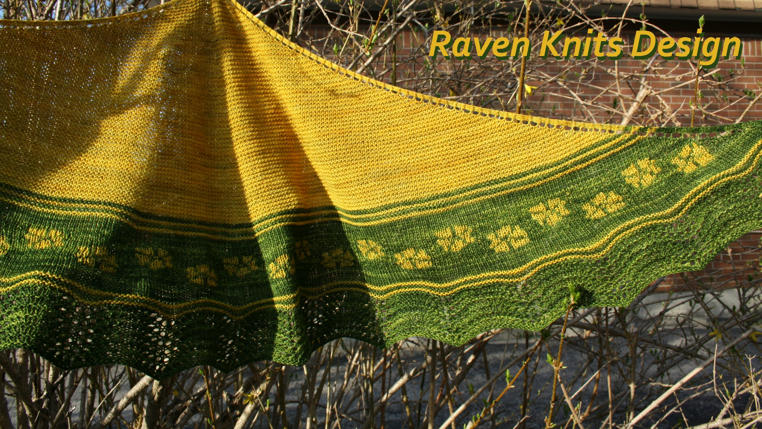 (@ravenknits) Cover Image