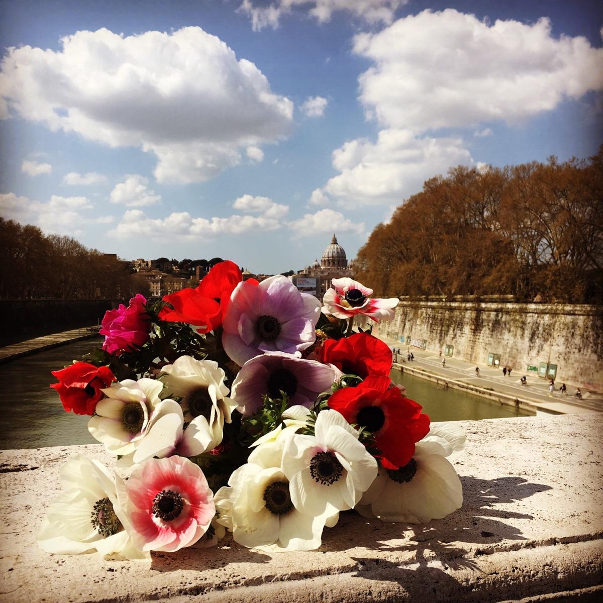 Flores Búcaro (@bucaroarteyflores) Cover Image