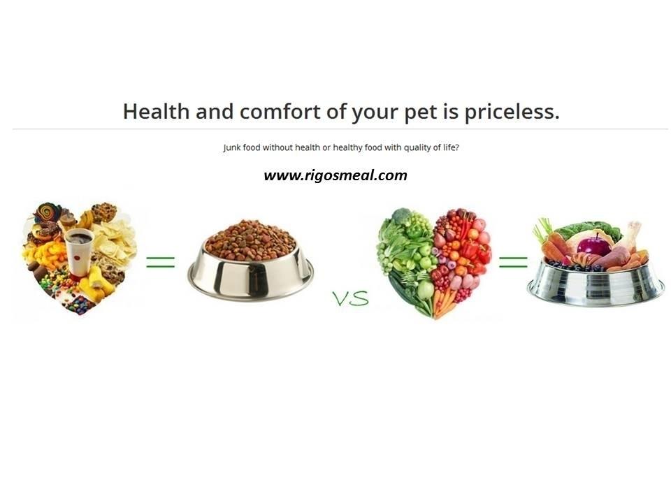 Rigo's Meal (Real Raw Food 2 Pets) (@rigosmeal) Cover Image