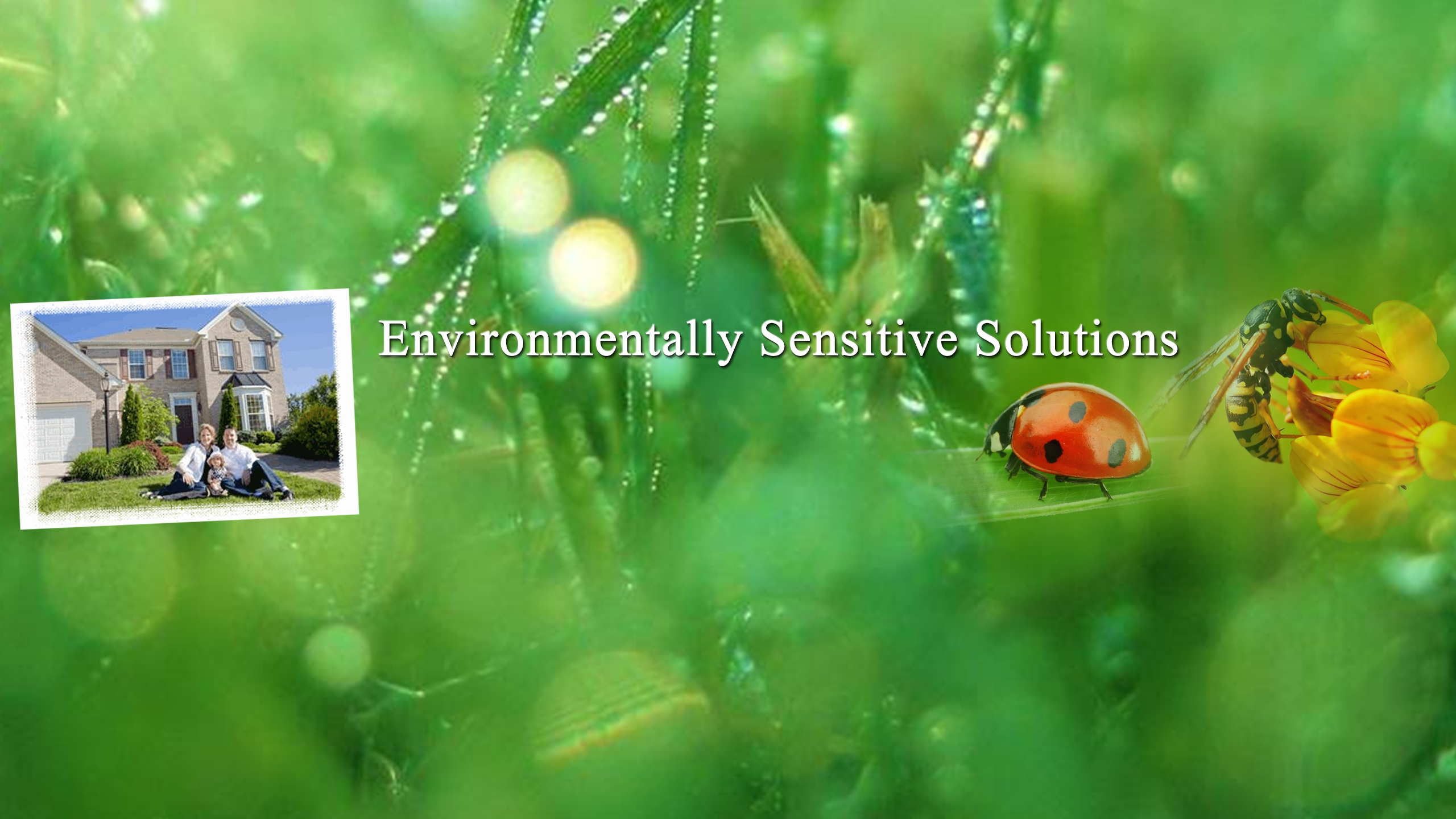 Freehold Pest Control (@freeholdpest) Cover Image