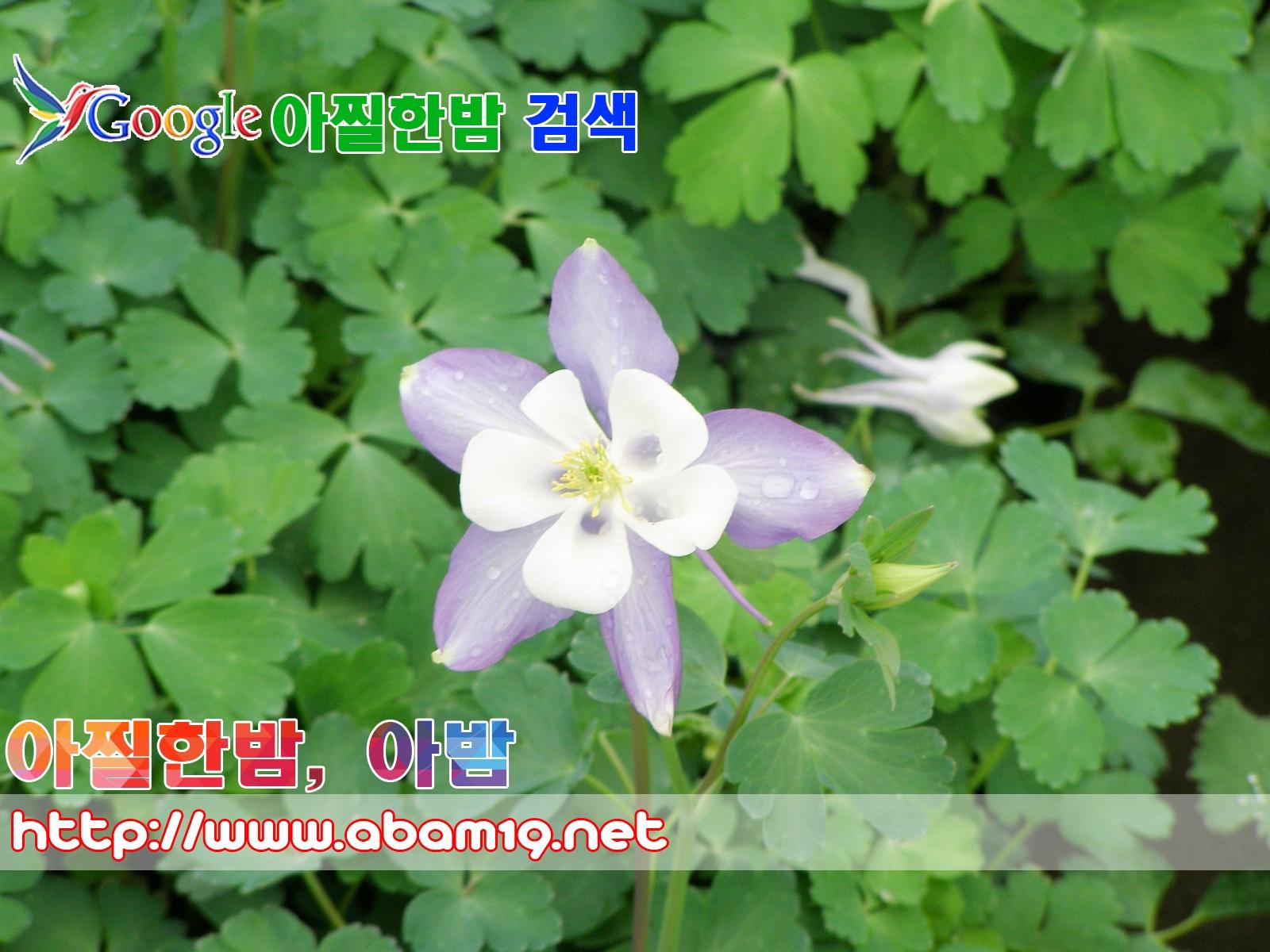 수영오피 (@suyongop) Cover Image