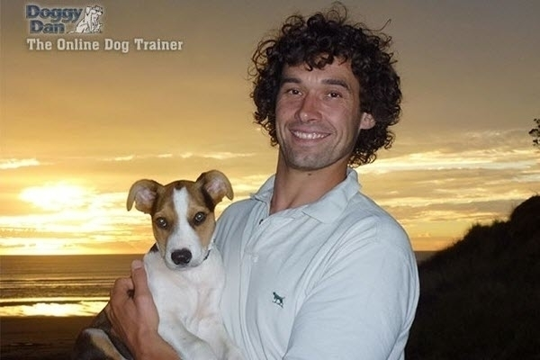 @onlinedogtrainer Cover Image