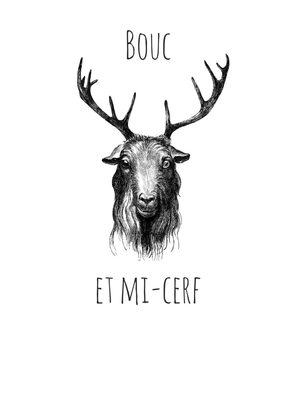 Le Tshirt (@le_tshirt) Cover Image