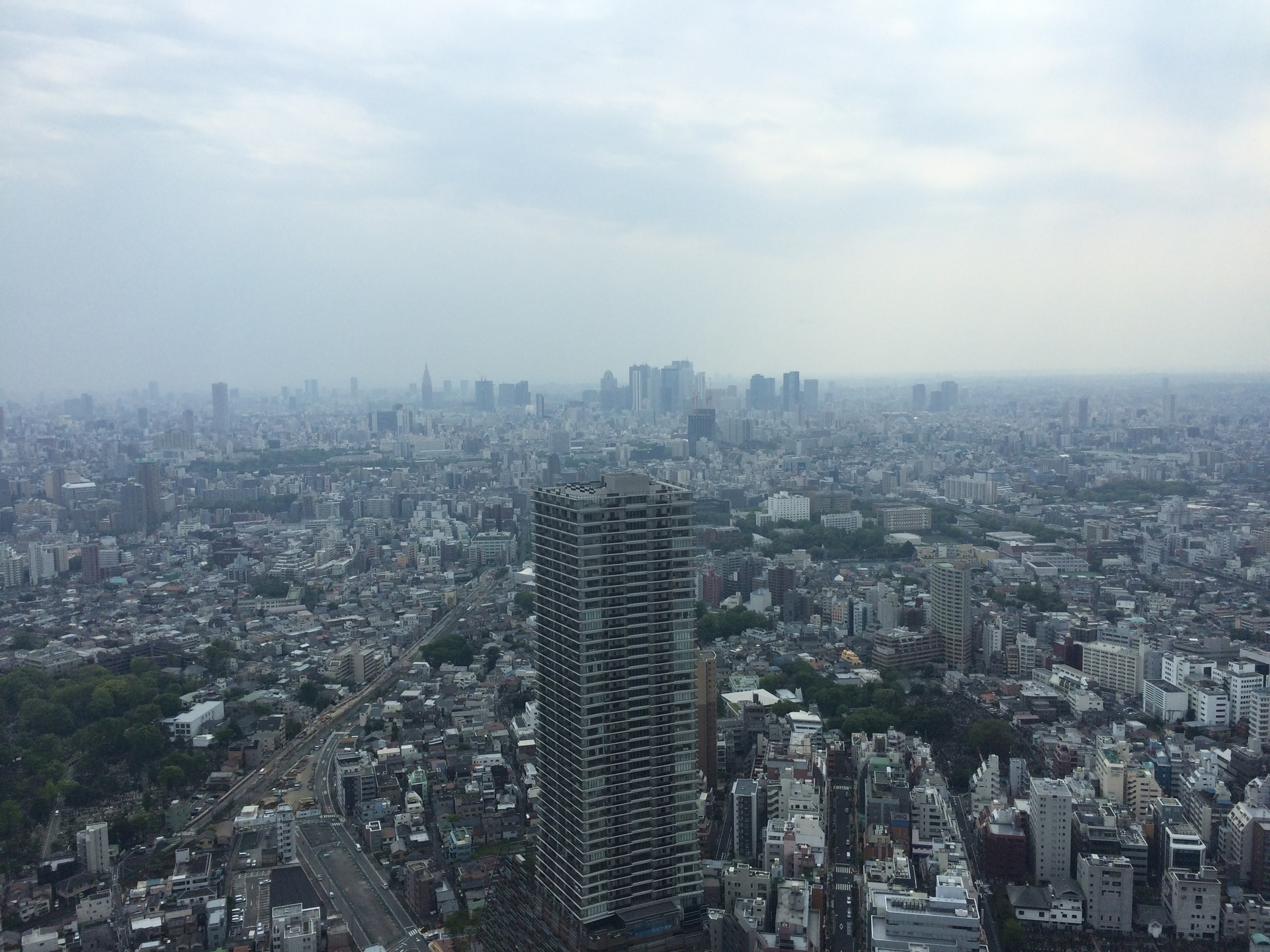 (@ello_tokyo) Cover Image