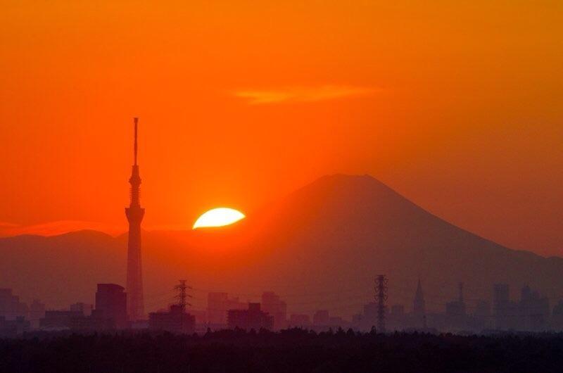 Yoshirou Tsuchitani (@ymthouse) Cover Image
