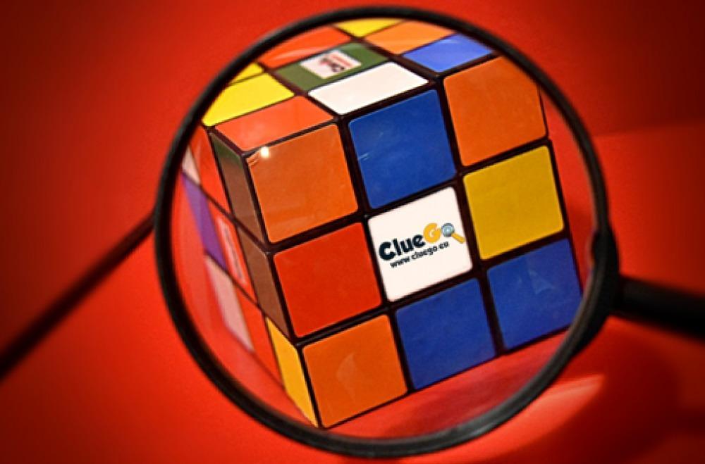 ClueGo - Escape Rooms & Adventures (@cluego) Cover Image