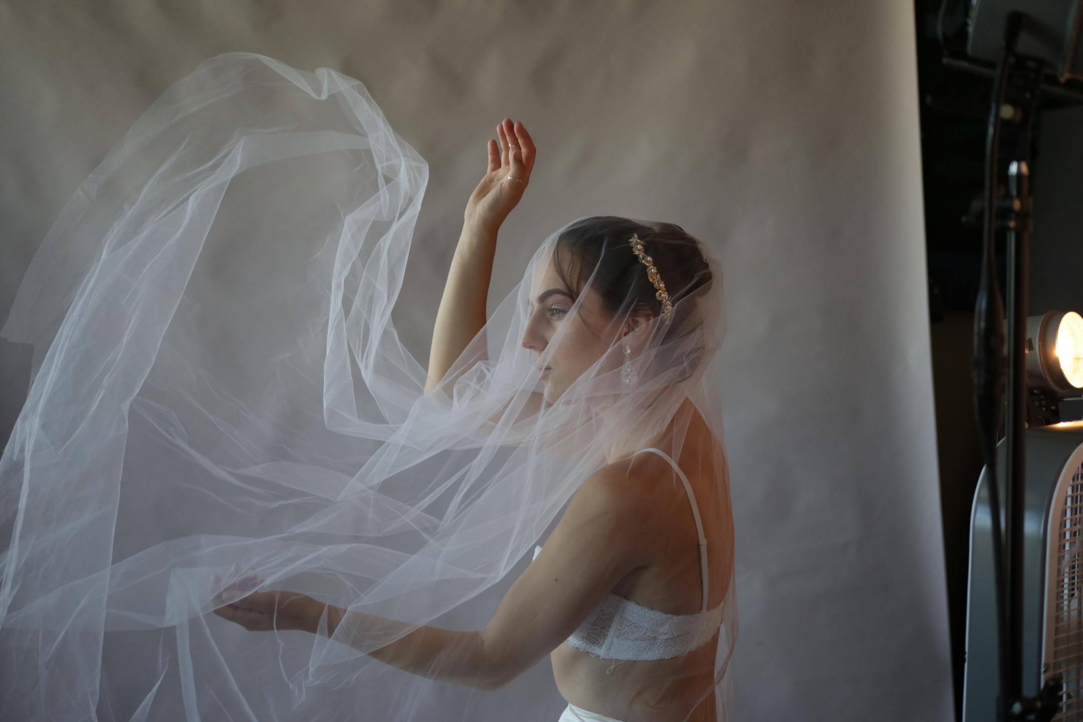 Cecile Davis Storm (@cecilegiraffe) Cover Image