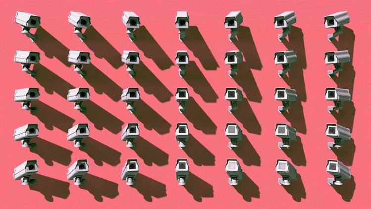 Tropicult.com (@tropicult) Cover Image
