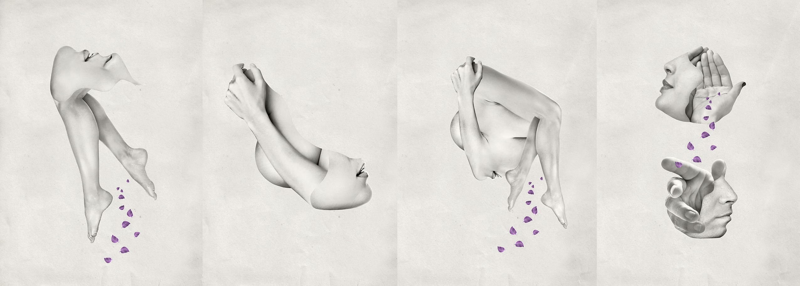Javier Aldabalde Cavallero (@javieraldabalde) Cover Image
