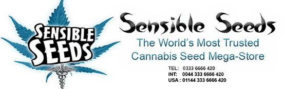 Sensible Seeds (@sensibleseeds) Cover Image