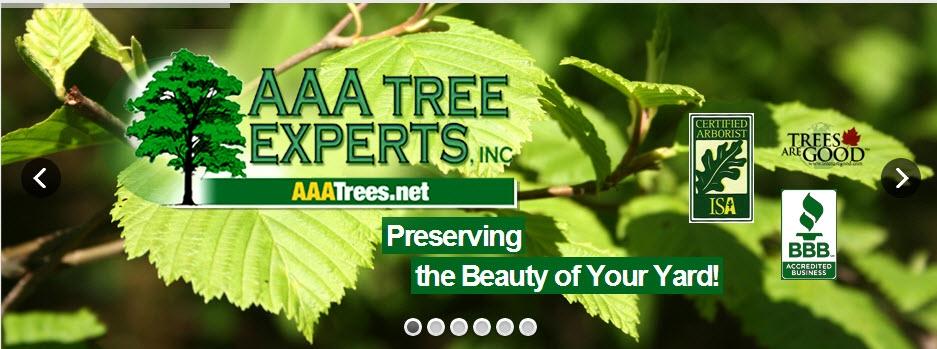 AAA Tree Experts, Inc (@aaatreecharlotte) Cover Image