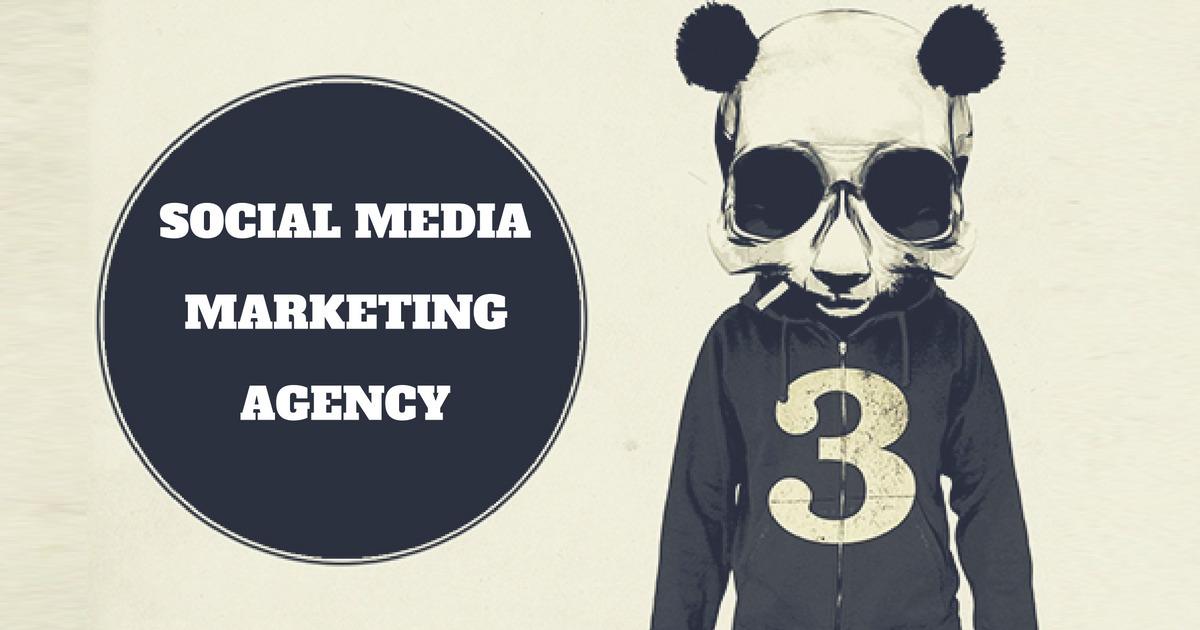 Panda Social (@pandasocial) Cover Image